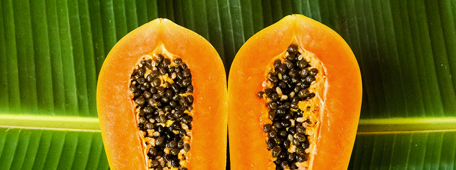 slide6-papayas-how-to-store